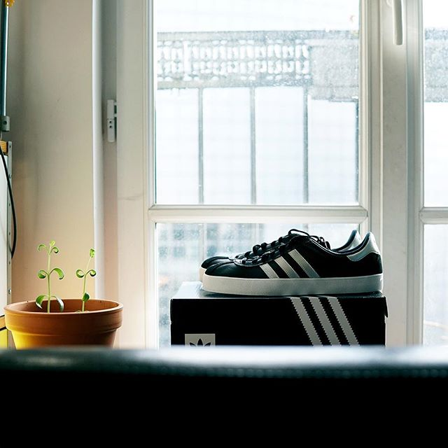 A new adidas skate shoes